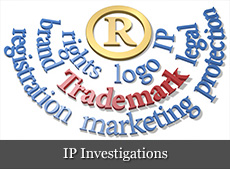 claim investigation services